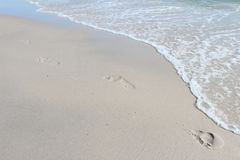 Footprints on beach Royalty Free Stock Photos