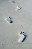 Footprints on the Beach royalty free stock photography