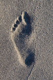 Footprints on beach. Footprint on beach in early morning sunrise Royalty Free Stock Image