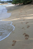 Footprints on the beach. Foot prints on the beach in Barbados with water lapping up on the beach Stock Photography
