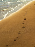Footprints on the beach. Isolated footprints on the beach with water reflections Stock Photo