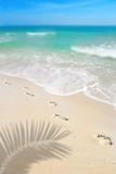 Footprints on Beach Royalty Free Stock Photos