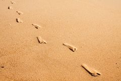 Footprints on the beach. A row of foot prints on the beach leading towards the viewer Stock Image