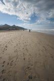 Footprints on beach. Footprints leading into disctance on oregon beach near Cannon Beach stock images