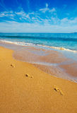 Footprints on the Beach. Footprints on Beach with Ocean Shoreline stock images