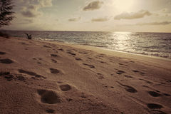 Footprints on beach Royalty Free Stock Photography