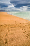 Footprints on the beach by the Arctic sea, Iceland Royalty Free Stock Photo