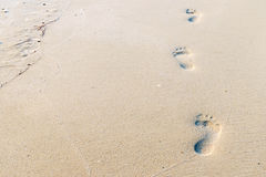 Footprints on the beach Stock Images