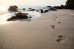 Footprints on the beach. Footprints on the beautiful beach Royalty Free Stock Image