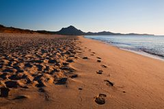 Footprints on the beach. Footprints on a shoreline royalty free stock images