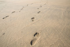 Footprints on the beach. Human footprints on the beach leading to the shore Royalty Free Stock Photo