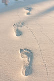 Footprints on the beach left behind royalty free stock image
