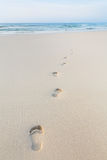 Footprints on beach Royalty Free Stock Photo