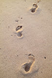 Footprints in the beach sand Stock Image