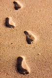 Footprints on the beach sand. Leading towards the viewer Royalty Free Stock Photo