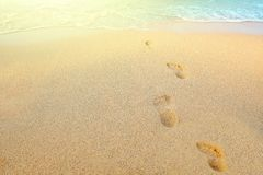 Footprints on beach. Footprints in the sand beach Stock Photography
