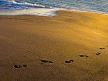 Footprints in Beach Sand Royalty Free Stock Image