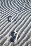 Footprints on Beach sand. Footprints in the sand at Old Telegraph Station at Eucla South Australia Royalty Free Stock Image