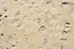 Footprints in beach sand background. Background with various footprints and tread marks in the half wet sand on a beach Stock Images