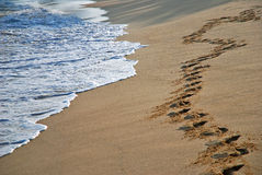 Footprints on beach Royalty Free Stock Image
