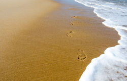 Footprints in the beach Royalty Free Stock Photography