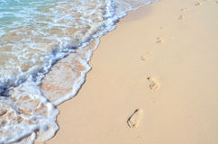 Footprints in the beach. Scenic with water and footprints at a beautiful beach Royalty Free Stock Image