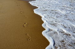 Footprints in the beach. Scenic with water and footprints at a beautiful beach Royalty Free Stock Photos