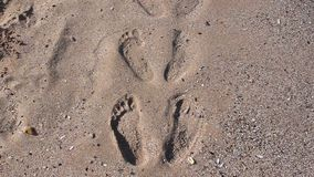 Footprints on the beach stock video footage