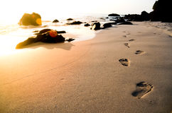 Footprints on the beach. Footprints on the sunset beach Royalty Free Stock Images