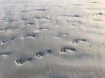 Footprints on the beach during sunset stock photos