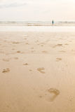 Footprints on the beach at sunset time Royalty Free Stock Photography
