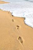 Footprints on beach Royalty Free Stock Photo