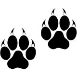 Footprints of a big cat. Panther or tiger traces Royalty Free Stock Images