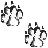 Footprints of a big dog or cat Royalty Free Stock Image
