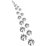 Footprints of a big dog or cat Stock Photos