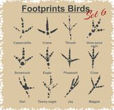 Footprints Birds - vector set. Stock illustration Stock Photo