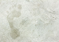 Footprints in cement floor Royalty Free Stock Images