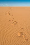 Footprints at Coral Pink Sand Dunes State Park, Ut Royalty Free Stock Photography