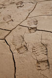 Footprints in Cracked Earth Royalty Free Stock Photos