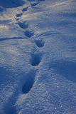 Footprints on the deep snow Royalty Free Stock Image