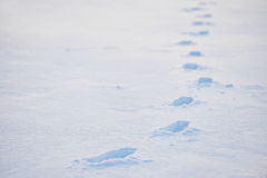 Footprints in deep snow Royalty Free Stock Image