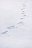 Footprints in deep snow Stock Photo