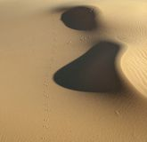 Footprints in the desert Royalty Free Stock Photography