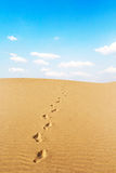 Footprints on desert and blue sky Stock Photo