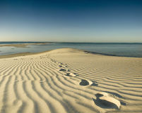 Footprints on desert island Royalty Free Stock Image