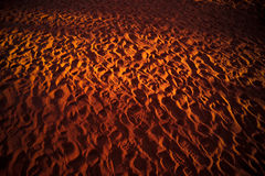 Footprints in the Desert Royalty Free Stock Photos