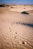 Footprints on desert sand stock photo