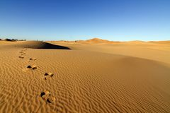 Footprints on desert sand dunes with blue sky Stock Photography