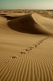 Footprints on desert Royalty Free Stock Photography
