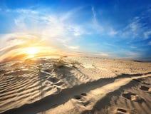 Footprints in desert Stock Photography